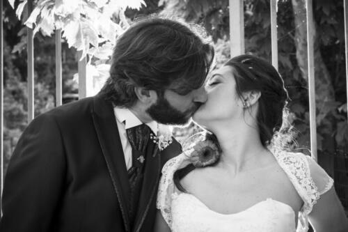 sposi (141 di 143)
